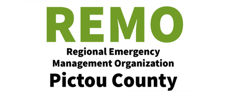 Regional Emergency Management Organization